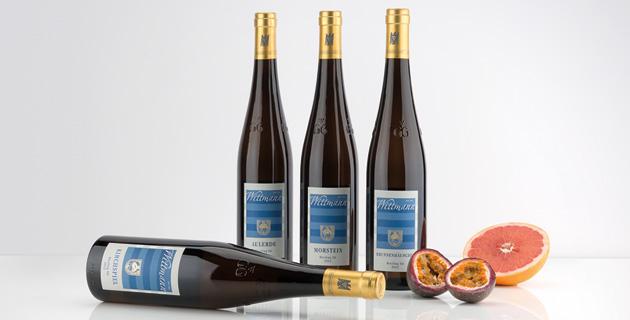 Weingut Wittmann – Riesling-König aus Rheinhessen