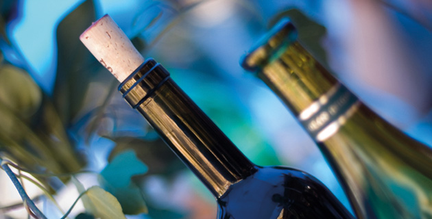 Großes Fest – aber welchen Wein servieren?