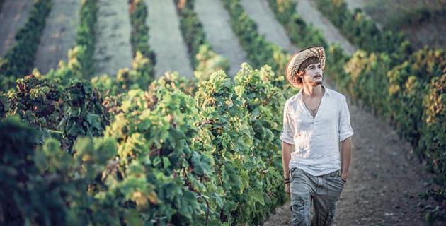 Sardinien – Der plötzliche Star der Weinszene