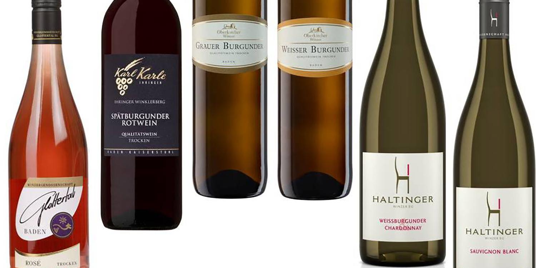 Neu bei selection – Probierpakete prämierter Weine