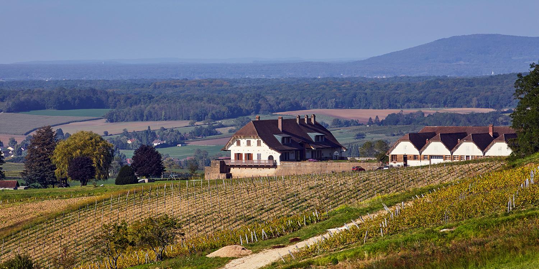 Das Jura – Ein Schuss Anachronismus zum Comté