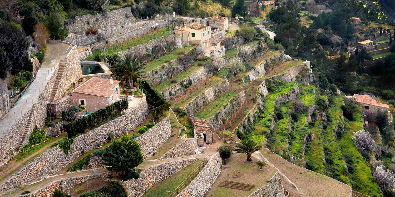 Mallorca – Callet und Manto Negro statt Sangria