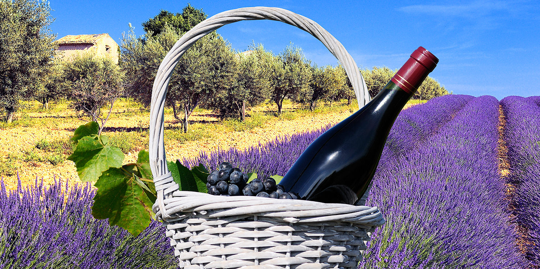 La Belle Vie en France – die Weinregion Provence