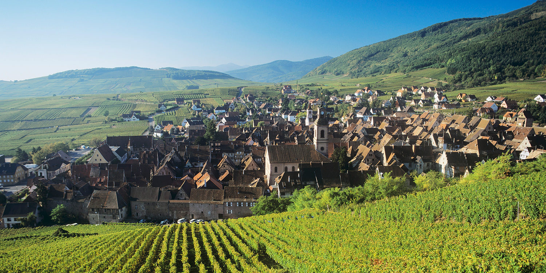 La Tour d'Alsace – ein Ausflug für Geniesser