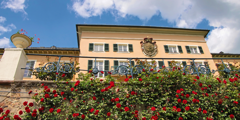 Schloss Johannisberg und die Rieslingbibliothek