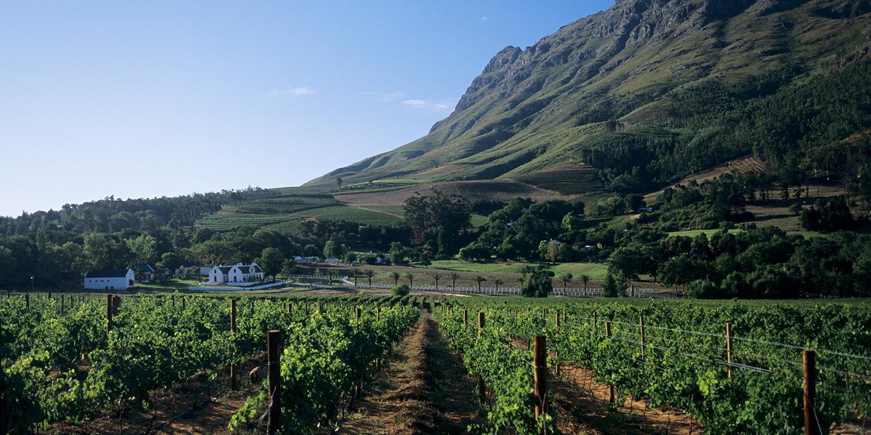 <thrive_headline click tho-post-94814 tho-test-14>Stellenbosch – das Vorzeigeweinparadies am Kap</thrive_headline>