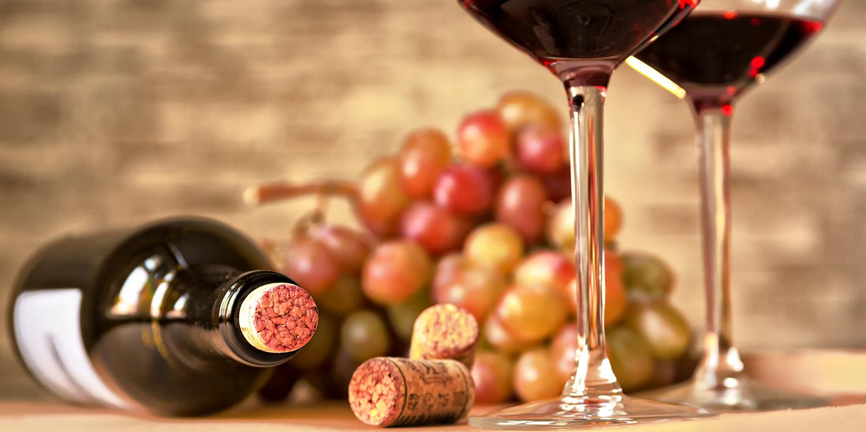 Rebe, Keller, Flasche – 8 Stationen des Weins