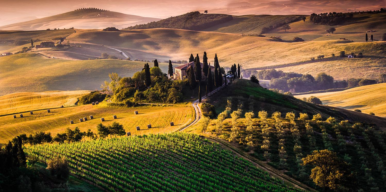 Italien – Die drei spannendsten Weinregionen