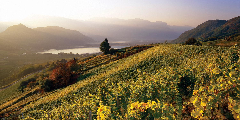 Das idyllische Südtirol – Einzigartigkeit in der Flasche