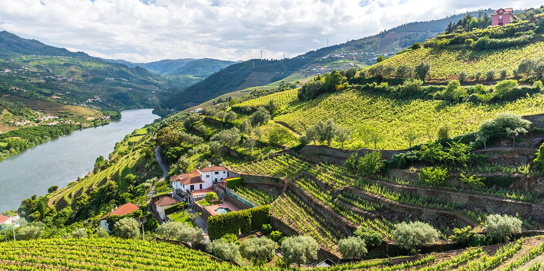 <thrive_headline click tho-post-99441 tho-test-26>Weinregionen die Sie in Portugal kennen sollten</thrive_headline>