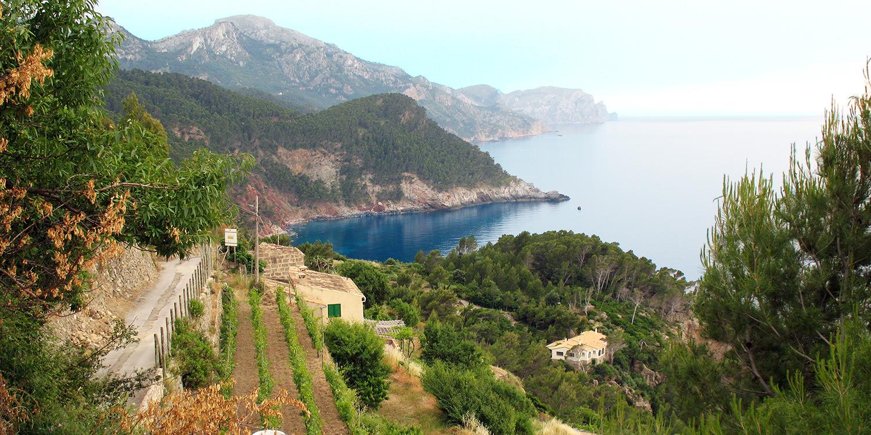 Berühmte Weinlagen – Banyalbufar auf Mallorca