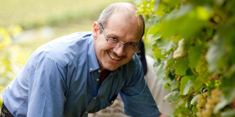 Die besten Silvaner-Weingüter des Jahres
