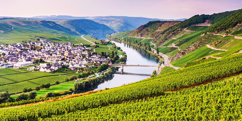 Berühmte Weinlagen – die Trittenheimer Apotheke