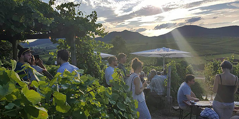 Die sieben schönsten Weinfeste der Pfalz