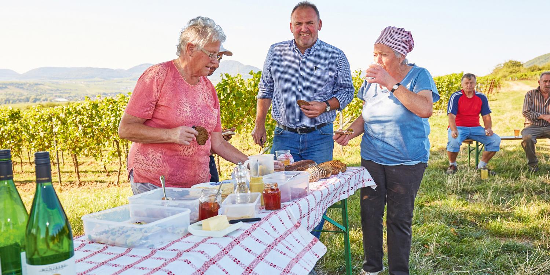 Selection prämiert – Burgunder-Weingut des Jahres 2017