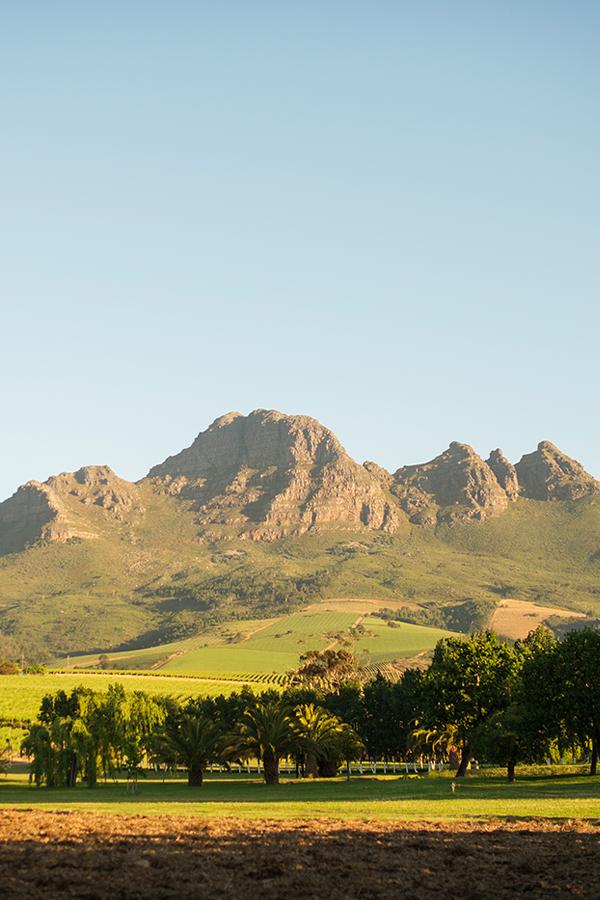 Die Helderberg Mountains im Herzen Stellenboschs