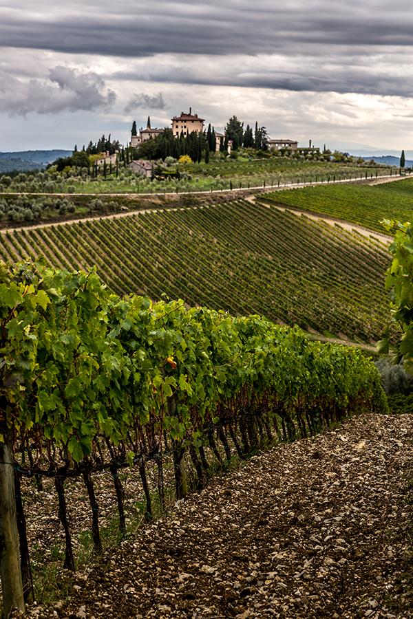 Das Chianti Classico-Weingut Tenuta Perano