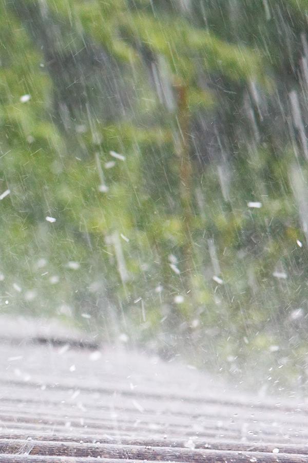 Extremwetter verhagelt Winzern die Laune.