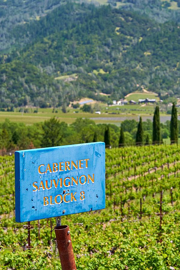 Der Private Reserve Cabernet Sauvignon ist noch heute das Aushängeschild des Hauses